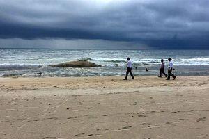 'Cá Ông' khoảng 10 tấn dạt vào bờ biển Quảng Trị