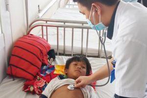 Gia Lai: Hai trẻ ngộ độc do ăn thịt cóc, một bé tử vong