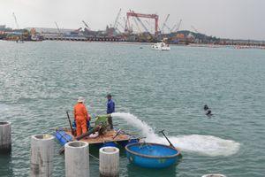 Đề xuất đấu giá lựa chọn nhà đầu tư xây dựng cảng biển