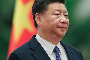 Chủ tịch Trung Quốc Tập Cận Bình cam kết thúc đẩy thương mại tự do