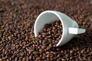 Giá cà phê hôm nay 6/11: Giá giảm, ít giao dịch