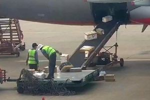Sân bay Tân Sơn Nhất: Tiếp viên ẩu đả, nhân viên ném hành lý của khách
