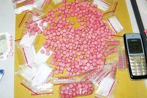 Hải quan Hà Tĩnh bắt đối tượng vận chuyển số lượng lớn ma túy