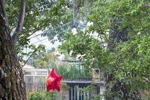 Thiết kế ngôi nhà trong suốt trên cây, ít ai biết ẩn ý đằng sau đó