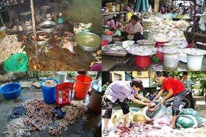 Kinh hoàng ổ bệnh sán dây lợn tại Bình Phước