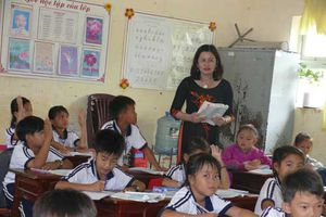 Hơn 1.400 giáo viên bị cắt hợp đồng bất thường ở Cà Mau