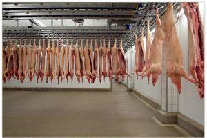 Tiêu chuẩn quốc gia với thịt mát: Cần thay đổi thói quen sử dụng