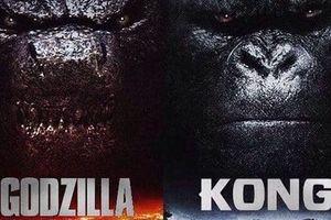 Siêu phẩm cuồng nộ 'Godzilla vs Kong' đã tiết lộ ngày sản xuất