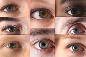 13 sự thật thú vị về đôi mắt có thể bạn chưa biết