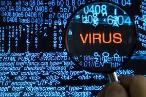 Lây nhiễm mã độc tại Việt Nam đang diễn biến phức tạp