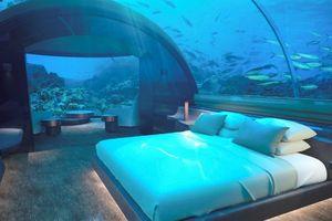 Nơi bạn có thể ngủ cạnh cá mập với với giá 50.000 USD/đêm