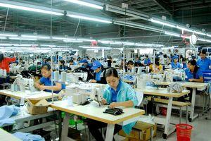 May Phú Thành (MPT): Phó tổng giám đốc và tổ chức có liên quan liên tục gom mua cổ phiếu