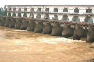 Nguồn nước sông Cầu Đỏ nhiễm mặn, Dawaco gửi thông báo 'sử dụng nước tiết kiệm'!