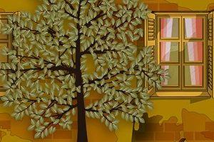 Những ô cửa sổ
