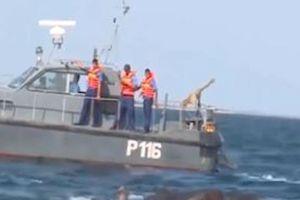 Giải cứu hai con voi bị trôi dạt ra vùng biển Sri Lanka