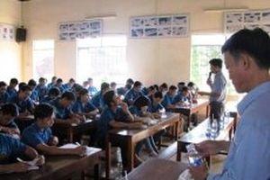 12 giáo viên bị tước chứng nhận dạy lái xe vì gian dối