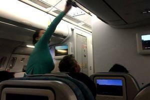 Đội lốt doanh nhân đi máy bay hạng thương gia để 'móc túi'