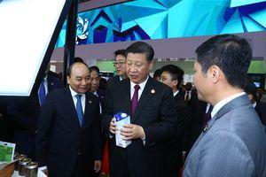 Ly sữa Việt và sự quan tâm của Chủ tịch Tập Cận Bình