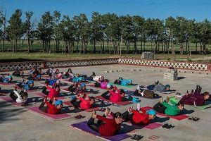 Yoga – sức mạnh 'cải lão hoàn đồng'