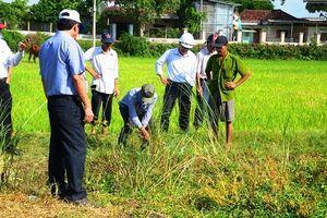 Vụ 'bê tông cốt cây': Chủ đầu tư dự án xin lỗi người dân