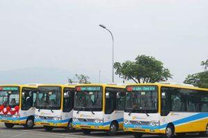 Đà Nẵng: Mở thêm 6 tuyến xe bus mới có trợ giá