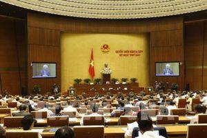 Hôm nay Quốc hội thảo luận dự án Luật Đặc xá và Luật Chăn nuôi