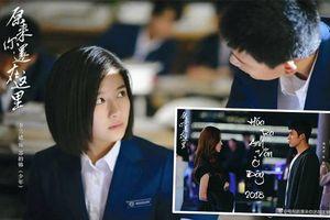 Điểm Douban 'Hóa ra anh vẫn ở đây' bản truyền hình: Nội dung và diễn xuất vượt xa bản điện ảnh
