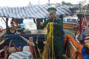 Nghệ An: Bắt hàng loạt tàu khai thác hải sản theo kiểu 'tận diệt'