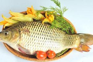 Cách dùng các bộ phận của cá chép chữa bệnh