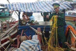 Nghệ An: Bắt giữ hàng loạt phương tiện dùng kích điện đánh bắt hải sản