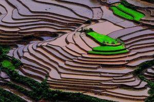 Ruộng bậc thang Việt Nam lot top cảnh đẹp tự nhiên thế giới