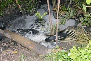 Bến Tre: Bắt quả tang cơ sở xả nước thải chưa qua xử lý ra môi trường