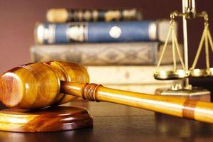 Thư ký, cán bộ tòa án bị hành hung, chửi bới 'như cơm bữa'