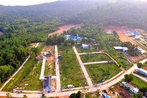 Phó Thủ tướng: Làm rõ việc cấu kết, bao che vi phạm đất đai ở Phú Quốc