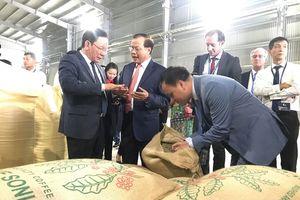 Khánh thành nhà máy chế biến cà phê tiêu chuẩn quốc tế tại Sơn La