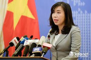 Bộ Ngoại giao: Trịnh Xuân Thanh vẫn đang thi hành án tại Việt Nam