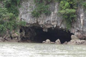 Bảo tồn và quản lý đất ngập nước - Bài 2: Lưu giữ giá trị thiên nhiên tại Vườn quốc gia Bái Tử Long