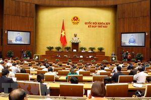 Tiếp tục chương trình Kỳ họp thứ 6, Quốc hội khóa XIV