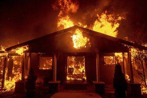 Cháy rừng ở California, lửa lan nhanh đủ thiêu 80 sân bóng/phút