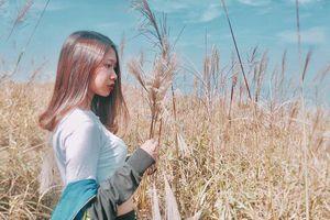 #Justgo: Mùa cỏ lau trắng muốt tại Bình Liêu