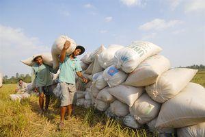 Bí thư Tỉnh ủy Đồng Tháp Lê Minh Hoan: Mục tiêu là phát triển bền vững