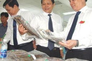 'Của ngon, vật lạ' xứ dừa Bến Tre trình làng tại Ngày hội tam nông