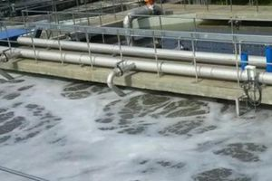 Xử lý nước thải theo quy định nào là đúng?