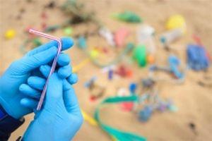 Giảm thiểu rác thải nhựa trong du lịch