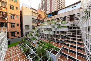 Cách Thâm Quyến phủ xanh thành phố chật hẹp