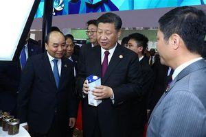 Tập đoàn TH đưa sữa tươi sạch chinh phục thị trường Trung Quốc