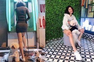 Ngỡ ngàng nhan sắc chân dài mặc váy ngắn dắt 2 chó dữ đi rút tiền ATM