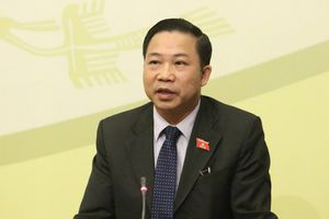 ĐBQH Lưu Bình Nhưỡng:'Chờ ý kiến, chấp hành quyết định của Đảng đoàn QH'