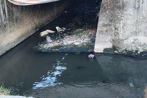 Làng nghề kim khí Đại Tự: Nơm nớp nỗi lo ô nhiễm nguồn nước ngầm
