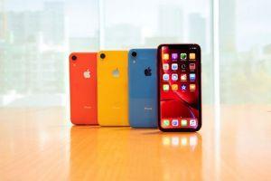Apple cắt giảm tổng sản lượng sản xuất iPhone tới 25%